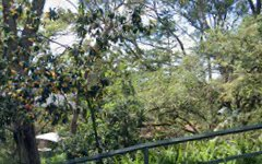 34-36 Caravan Head Road, Oyster Bay NSW