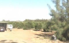 2681 Kidman Way, Tharbogang NSW