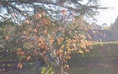 66 Burradoo Road, Burradoo NSW