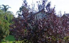 54 Yanco Avenue, Leeton NSW