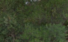 22 Ridgeland Drive, Teringie SA