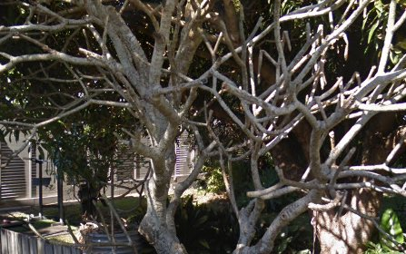 41 Kingsley Lane, Byron Bay NSW