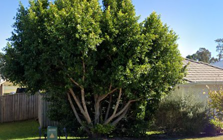 74 Saddlers Drive, Gillieston Heights NSW