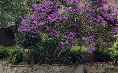 22 Millstream Grove, Dural NSW