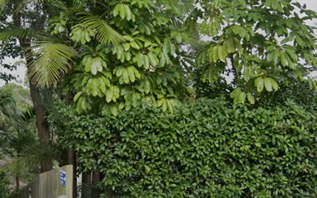 35 Wilfred Av, Chatswood NSW 2067