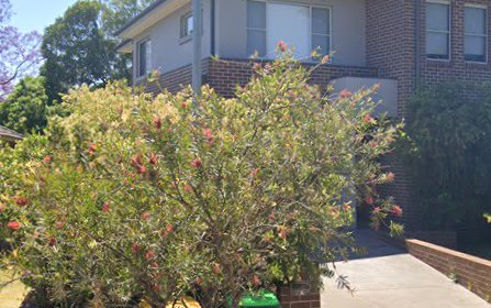 2A Mitchell Street, Ermington NSW