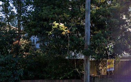 14/92 Milton Street, Ashfield NSW