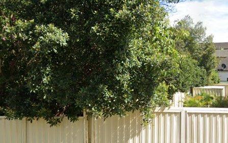 35 Allen Street, Canterbury NSW