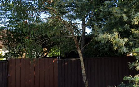 2/27 Barnsbury Grove, Bexley North NSW 2207