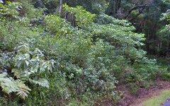 568 Mount Warning Road, Mount Warning NSW