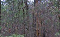 10 Koonyum Range RD, Wilsons Creek NSW