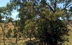 2153 Strathbogic Road, Wellingrove NSW