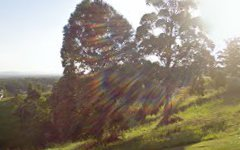 62 Hilltop Parkway, Tallwoods Village NSW