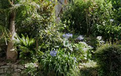 150 Wallumatta Road, Newport NSW