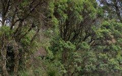 193 Great Western Highway, Blaxland NSW