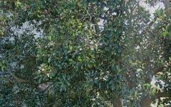 901/5 Cary Street, Drummoyne NSW