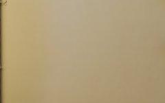 50 Renny Street, Paddington NSW