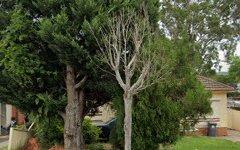 34 Austin Avenue, Campbelltown NSW