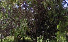 24 Waratah Avenue, Cudmirrah NSW