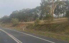 1 Wonga Wetlands, Splitters Creek NSW