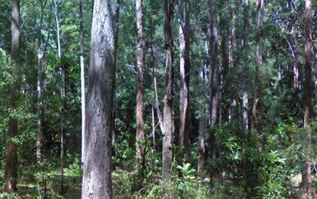 12A Greys Road, Woolgoolga NSW