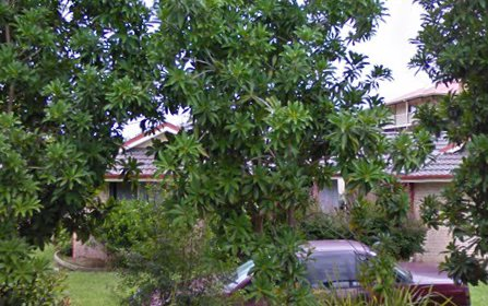 41 Sunset Ridge Drive, Bellingen NSW