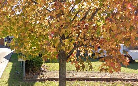 10 Werona Place, Parkes NSW