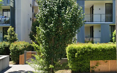 27-31 Forest Grove, Epping NSW