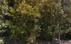 49 Old Farm Road, Pullenvale QLD