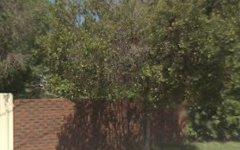 87 Blumer Avenue, Griffith NSW