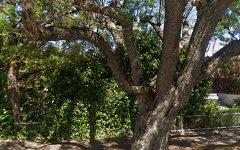 29 Allinga Ave, Glenside SA