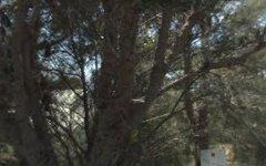 4 Towry Crescent, Vincentia NSW