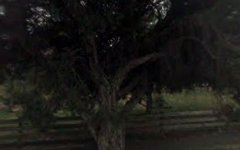557 Cape Otway Road, Moriac VIC
