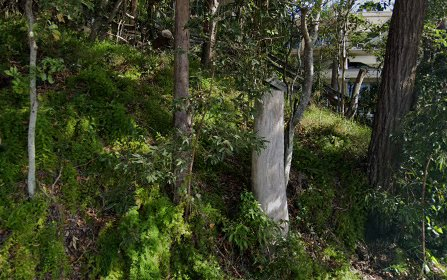 3/2 Pandanus St, Noosa Heads QLD 4567