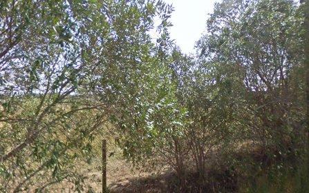 45 Longley Street, Elderslie NSW