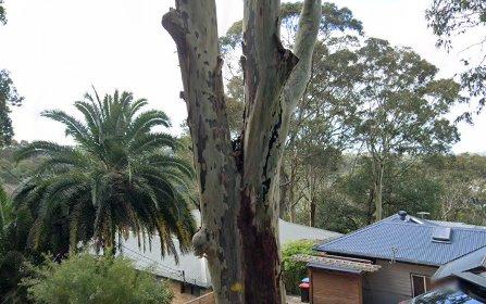 99 Wallumatta Road, Newport NSW