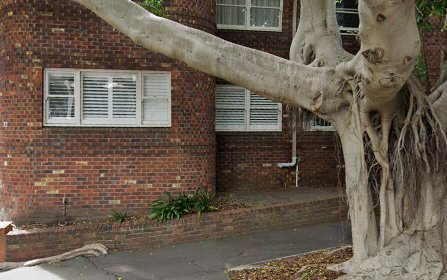 1/37 Nelson Street, Woollahra NSW