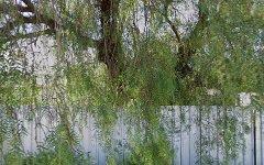 696 Blende Street, Broken Hill NSW