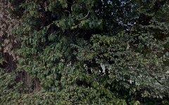 12 Albion Street, Pennant Hills NSW