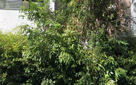 104/66 Atchison Street, Crows Nest NSW