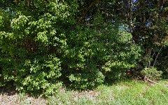 489 Duranbah Road, Duranbah NSW