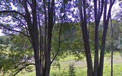 1446 Coolamon Scenic Drive, Mullumbimby NSW