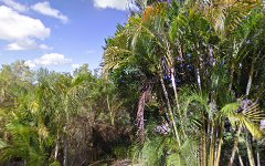 3 Ridgeland Close, Richmond Hill NSW