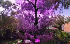 11 Noongah Terrace, Crescent Head NSW