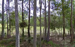 L118 Bull Hill Road, Tinonee NSW