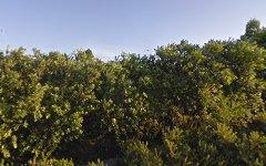 19 Coastal View Drive, Tallwoods Village NSW