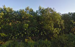21 Coastal View Drive, Tallwoods Village NSW
