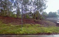 49 Brigantine Street, Rutherford NSW
