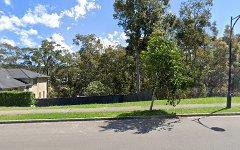 99 Blackwood Circuit, Cameron Park NSW