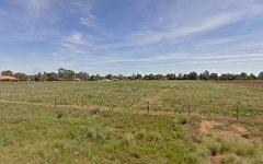 250 Petersham Road, Leeton NSW
